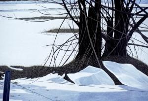 18-acryl-op-linnen-90x110cm-titel-winter