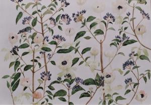 anemonen-en-viburnum