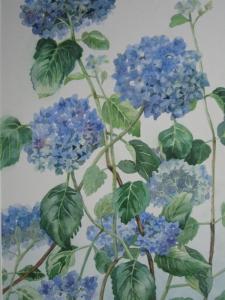 blauwe-hortensias