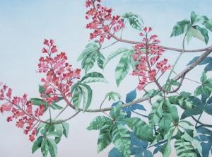 kastanjebloesem-roze