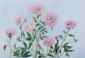 roze-pioenrozen